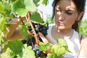 donna-agricoltura-donne-by-auremar-fotolia-750x500-620x414 (1)